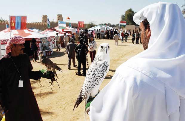 ОАЭ - фестиваль соколиной охоты
